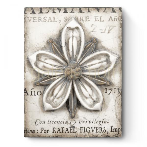 Dickens, Sid - T-449 Cosmopolitan Flower