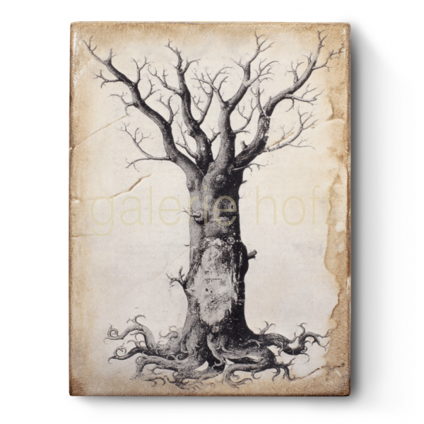 Dickens, Sid - T-125 Medieval Tree of Life