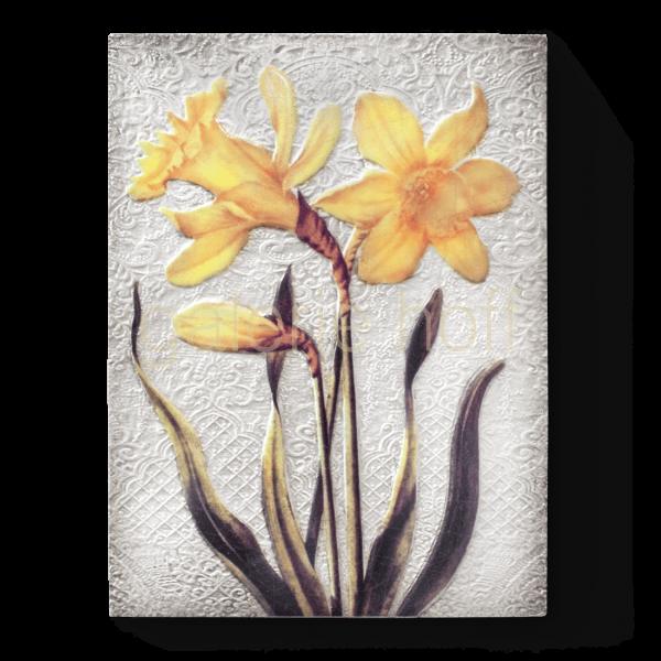 Dickens, Sid - T-509 Daffodils (Orange)