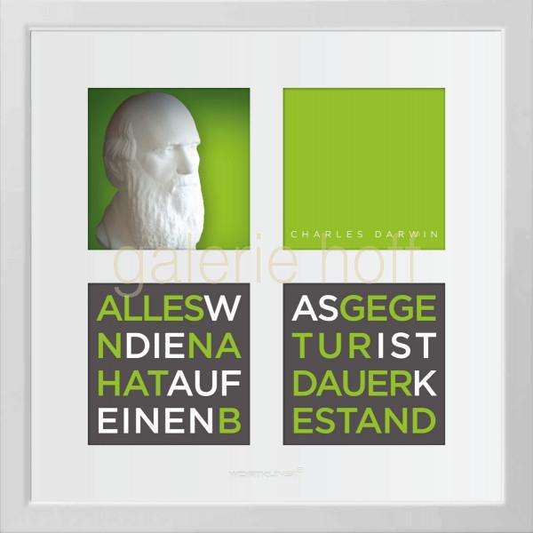 Wortkunst R. Birkelbach - Charles Darwin