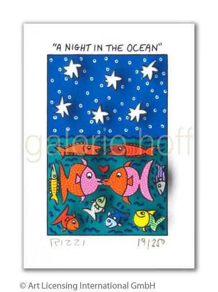 Rizzi, James - A night in the ocean