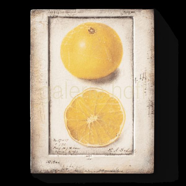 Dickens, Sid - T-371 Citron